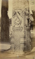 Close view of carved base of pavilion outside entrance, Ekambareshvara Temple, Kanchipuram 2580